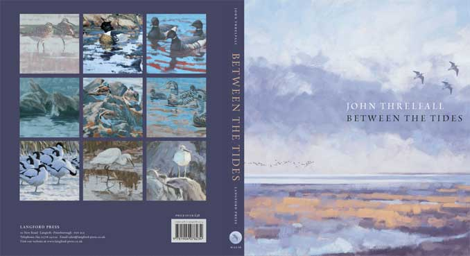 Between the Tides book cover