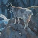 coastal-goat-mull