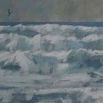 gannet-waves