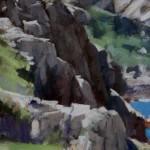 peregrine-over-the-guliot-headland-sark