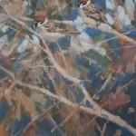 tree-sparrows