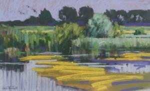 Summer Wetland